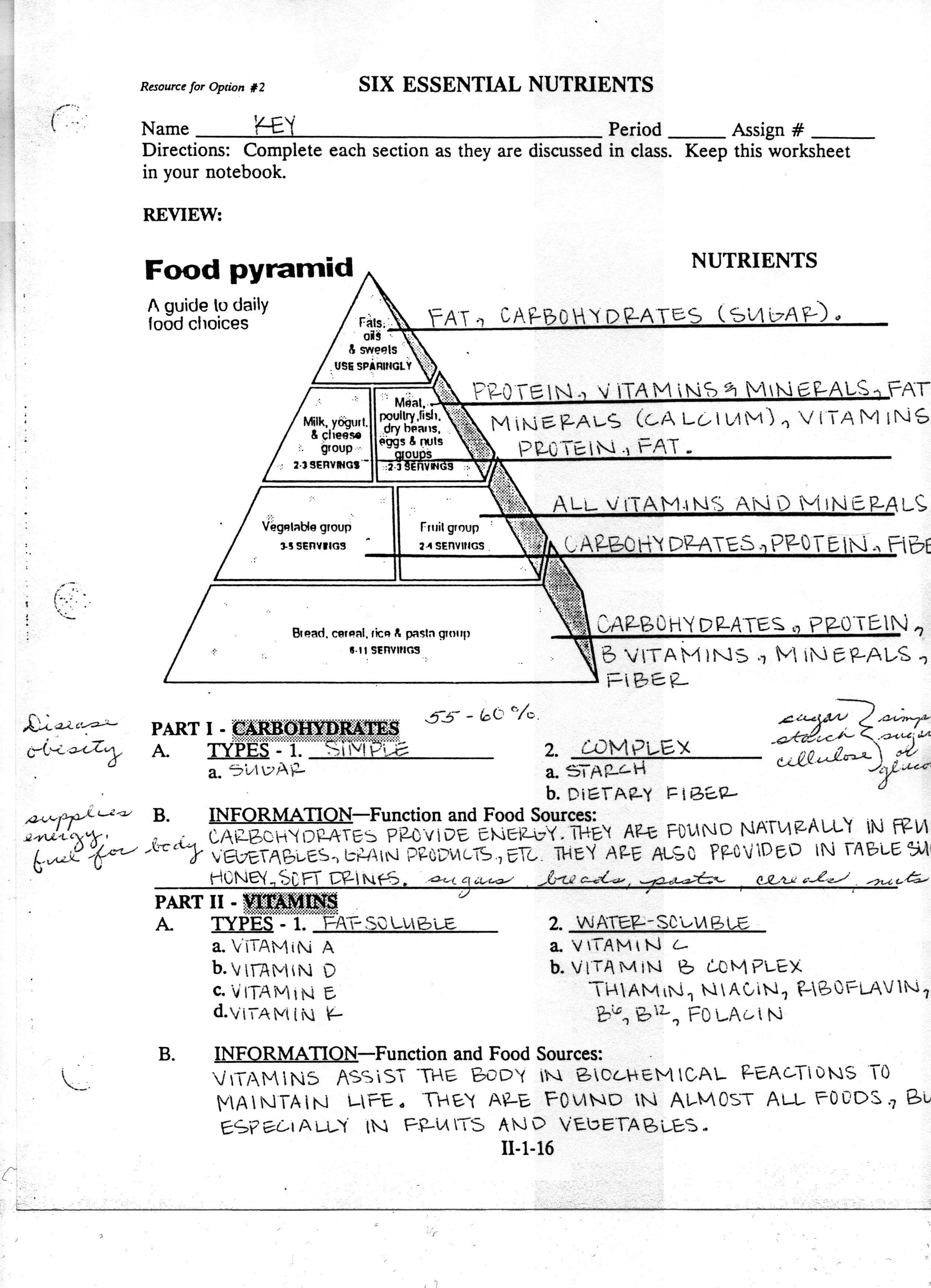 easy worksheet on food pyramid. Black Bedroom Furniture Sets. Home Design Ideas